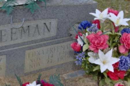 FREEMAN, EDNA - Clark County, Arkansas | EDNA FREEMAN - Arkansas Gravestone Photos