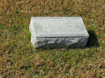 HARRINGTON, INFANT - Clark County, Arkansas | INFANT HARRINGTON - Arkansas Gravestone Photos