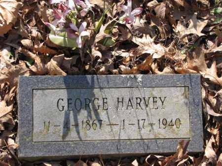 HARVEY, GEORGE - Clark County, Arkansas | GEORGE HARVEY - Arkansas Gravestone Photos