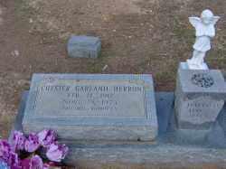 HERRON, CHESTER GARLAND - Clark County, Arkansas | CHESTER GARLAND HERRON - Arkansas Gravestone Photos