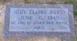 HURST, JUDY ELAINE - Clark County, Arkansas | JUDY ELAINE HURST - Arkansas Gravestone Photos