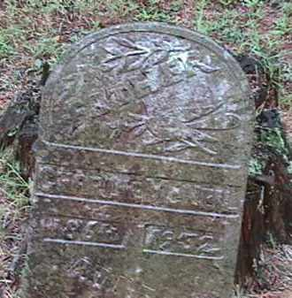 MCNEIL, CHARLIE - Clark County, Arkansas | CHARLIE MCNEIL - Arkansas Gravestone Photos