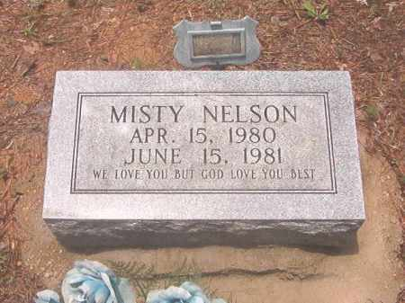 NELSON, MISTY - Clark County, Arkansas | MISTY NELSON - Arkansas Gravestone Photos
