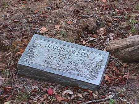 REED, MAGGIE - Clark County, Arkansas | MAGGIE REED - Arkansas Gravestone Photos