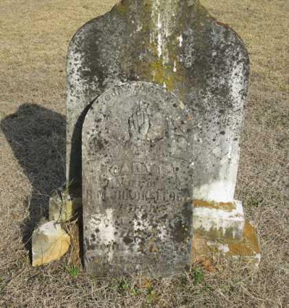 SHACKLEFORD, MARY E. - Clark County, Arkansas   MARY E. SHACKLEFORD - Arkansas Gravestone Photos