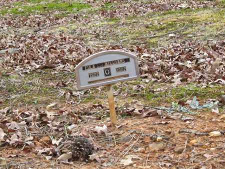 WILLIAMS, EULA - Clark County, Arkansas | EULA WILLIAMS - Arkansas Gravestone Photos
