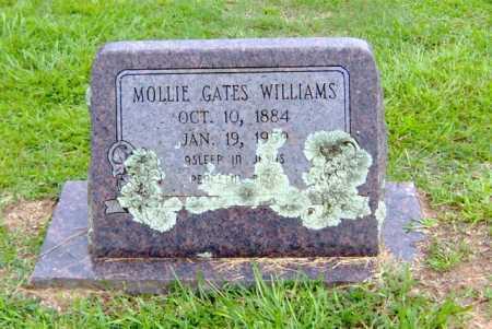 WILLIAMS, MOLLIE - Clark County, Arkansas   MOLLIE WILLIAMS - Arkansas Gravestone Photos