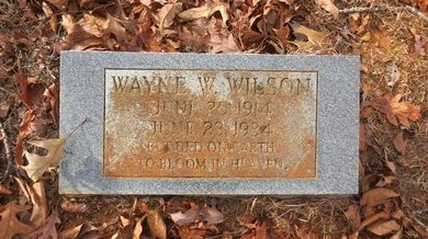 WILSON, WAYNE W. - Clark County, Arkansas | WAYNE W. WILSON - Arkansas Gravestone Photos
