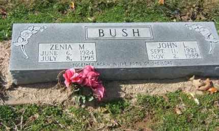 BUSH, JOHN - Clay County, Arkansas | JOHN BUSH - Arkansas Gravestone Photos