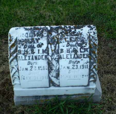 ALEXANDER, BABY LEAH - Clay County, Arkansas | BABY LEAH ALEXANDER - Arkansas Gravestone Photos