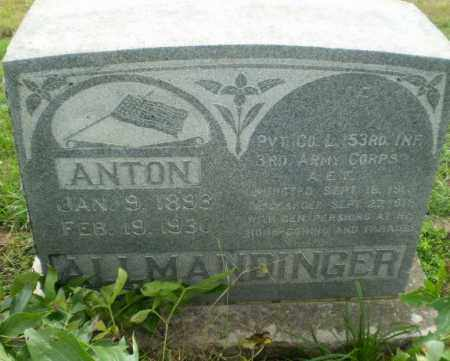 ALLMANDINGER  (VETERAN WWI), ANTON - Clay County, Arkansas | ANTON ALLMANDINGER  (VETERAN WWI) - Arkansas Gravestone Photos