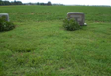 *ALLMANDINGER FAMILY, CEMETERY - Clay County, Arkansas | CEMETERY *ALLMANDINGER FAMILY - Arkansas Gravestone Photos
