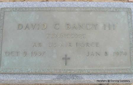 BANDY III  (VETERAN), DAVID C - Clay County, Arkansas | DAVID C BANDY III  (VETERAN) - Arkansas Gravestone Photos