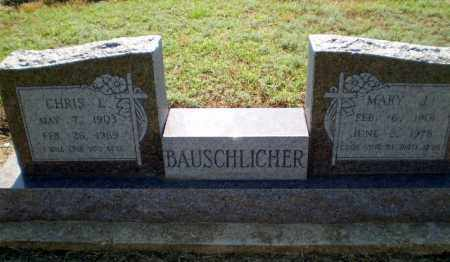BAUSCHICHER, MARY J - Clay County, Arkansas | MARY J BAUSCHICHER - Arkansas Gravestone Photos