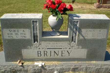 BRINEY, JOHN W - Clay County, Arkansas | JOHN W BRINEY - Arkansas Gravestone Photos