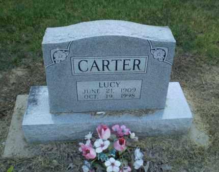 CARTER, LUCY - Clay County, Arkansas | LUCY CARTER - Arkansas Gravestone Photos
