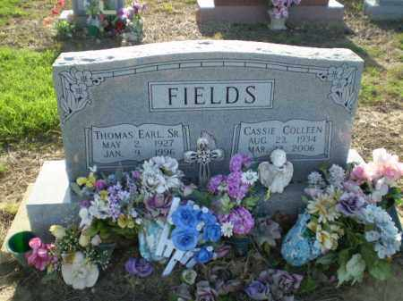 FIELDS, THOMAS - Clay County, Arkansas   THOMAS FIELDS - Arkansas Gravestone Photos