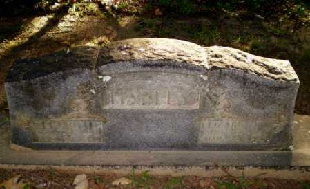 HARLEY, ELIZABETH J - Clay County, Arkansas | ELIZABETH J HARLEY - Arkansas Gravestone Photos