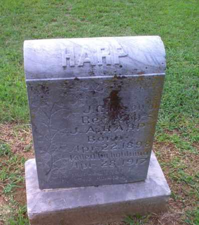 HARP, J.C. - Clay County, Arkansas   J.C. HARP - Arkansas Gravestone Photos