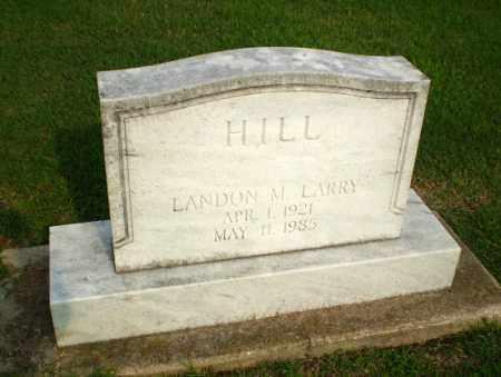 HILL, LANDON M LARRY - Clay County, Arkansas | LANDON M LARRY HILL - Arkansas Gravestone Photos