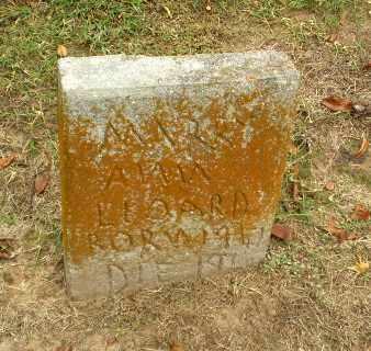 LEONARD, MARY ANN - Clay County, Arkansas | MARY ANN LEONARD - Arkansas Gravestone Photos