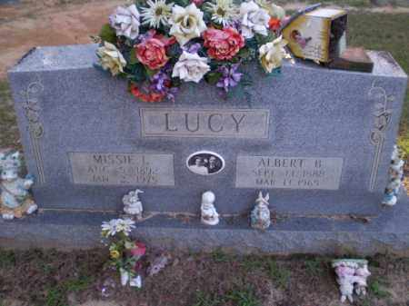 LUCY, MISSIE L - Clay County, Arkansas | MISSIE L LUCY - Arkansas Gravestone Photos
