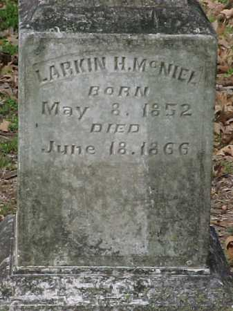 MCNIEL, LARKIN H. - Clay County, Arkansas | LARKIN H. MCNIEL - Arkansas Gravestone Photos