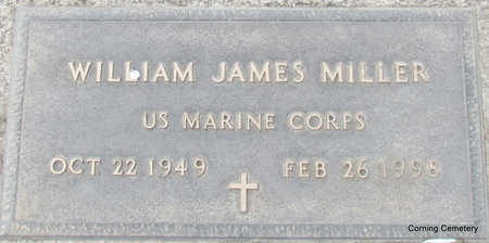 MILLER (VETERAN), WILLIAM JAMES - Clay County, Arkansas | WILLIAM JAMES MILLER (VETERAN) - Arkansas Gravestone Photos