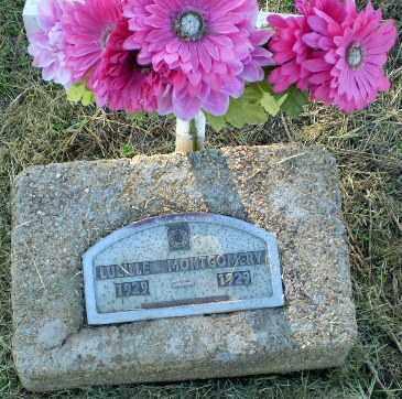 MONTGOMERY, LUCILLE - Clay County, Arkansas | LUCILLE MONTGOMERY - Arkansas Gravestone Photos