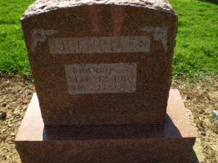 MULHOLLEN, CHARLIE A - Clay County, Arkansas | CHARLIE A MULHOLLEN - Arkansas Gravestone Photos