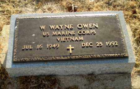 OWEN  (VETERAN VIET), W. WAYNE - Clay County, Arkansas | W. WAYNE OWEN  (VETERAN VIET) - Arkansas Gravestone Photos