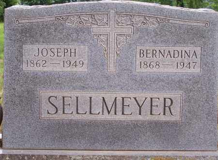 DAHMUS SELLMEYER, BERNADINA - Clay County, Arkansas | BERNADINA DAHMUS SELLMEYER - Arkansas Gravestone Photos