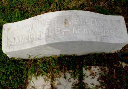 SHEEKS, WALTER - Clay County, Arkansas | WALTER SHEEKS - Arkansas Gravestone Photos