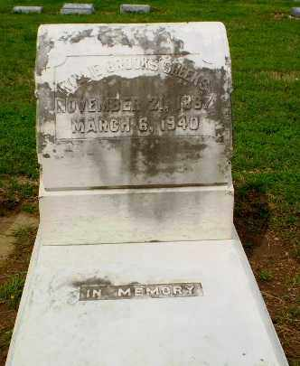 SHEEKS, WILLIE - Clay County, Arkansas   WILLIE SHEEKS - Arkansas Gravestone Photos
