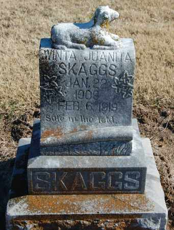 SKAGGS, WINTA JUANITA - Clay County, Arkansas | WINTA JUANITA SKAGGS - Arkansas Gravestone Photos