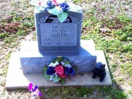 SMITH, RICKY - Clay County, Arkansas | RICKY SMITH - Arkansas Gravestone Photos