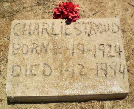 STROUD, CHARLIE - Clay County, Arkansas | CHARLIE STROUD - Arkansas Gravestone Photos