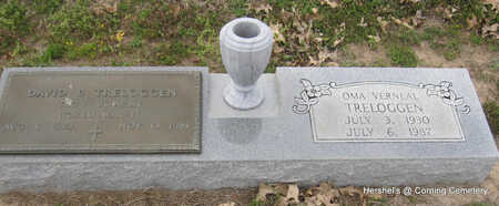 TRELOGGEN, DAVID B. - Clay County, Arkansas | DAVID B. TRELOGGEN - Arkansas Gravestone Photos