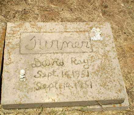 TURNER, DAVID RAY - Clay County, Arkansas   DAVID RAY TURNER - Arkansas Gravestone Photos