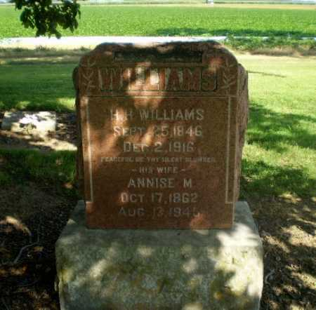 WILLIAMS, ANNISE M - Clay County, Arkansas | ANNISE M WILLIAMS - Arkansas Gravestone Photos