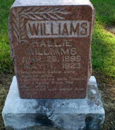WILLIAMS, HALLIE - Clay County, Arkansas   HALLIE WILLIAMS - Arkansas Gravestone Photos