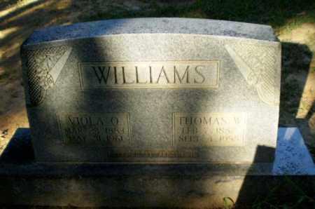 WILLIAMS, THOMAS W - Clay County, Arkansas | THOMAS W WILLIAMS - Arkansas Gravestone Photos