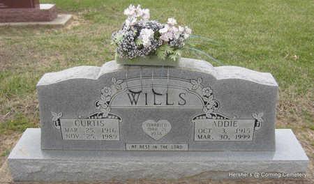 WILLS, ADDIE - Clay County, Arkansas | ADDIE WILLS - Arkansas Gravestone Photos