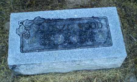 WOOD, ALONZO - Clay County, Arkansas | ALONZO WOOD - Arkansas Gravestone Photos