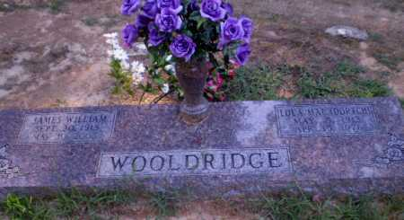 WOOLDRIDGE, JAMES WILLIAM - Clay County, Arkansas | JAMES WILLIAM WOOLDRIDGE - Arkansas Gravestone Photos