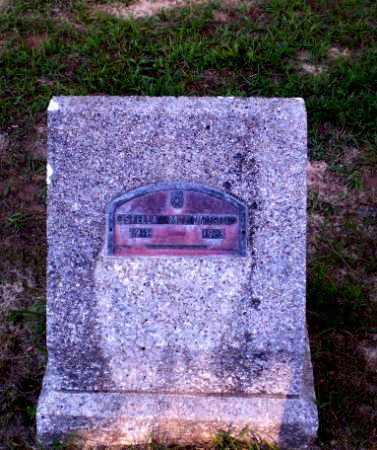 WRIGHT, STELLA M - Clay County, Arkansas | STELLA M WRIGHT - Arkansas Gravestone Photos
