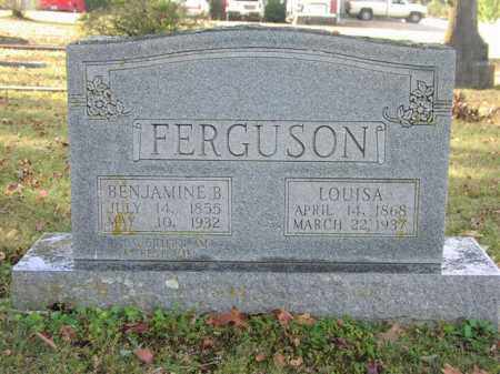 DILL FERGUSON, LOUISA - Cleburne County, Arkansas | LOUISA DILL FERGUSON - Arkansas Gravestone Photos