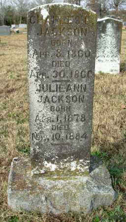 JACKSON, JULIE ANN - Cleburne County, Arkansas | JULIE ANN JACKSON - Arkansas Gravestone Photos