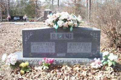 COLLARD REED, HARRIETT - Cleburne County, Arkansas | HARRIETT COLLARD REED - Arkansas Gravestone Photos