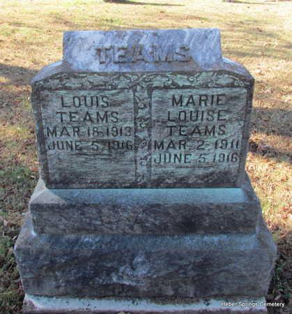 TEAMS, JR., LOUIS - Cleburne County, Arkansas | LOUIS TEAMS, JR. - Arkansas Gravestone Photos